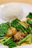 Remuez le chou frisé frit avec du porc croustillant et le riz cuit à la vapeur Image stock