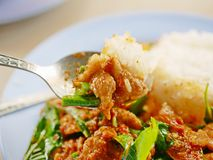Remuez le porc frit avec la pâte rouge Moo Pad Prik Gaeng de cari avec du riz blanc image stock