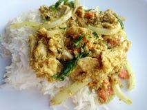 Remuez le poulet frit avec le curry et le riz thaïlandais de jasmin Photographie stock