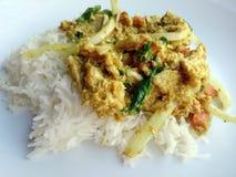 Remuez le poulet frit avec le curry et le riz thaïlandais de jasmin Photos stock