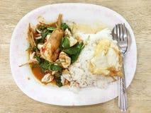 Remuez les fruits de mer frits avec l'herbe servie sur le riz et l'oeuf au plat de courant images stock