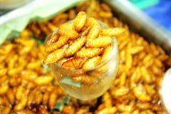 Remuez les vers à soie frits en verre, nourriture thaïlandaise photos libres de droits