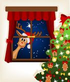 Ren, das durch Fenster Weihnachtszeit betrachtet Lizenzfreie Stockfotografie
