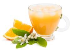 Ren fruktsaft med is och stycken av klippta apelsiner Fotografering för Bildbyråer
