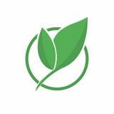 Ren grön värld Abstrakt symbol för ecogräsplanblad, symbol Eco vänligt begrepp för mat för logo för företag bio och organisk, Fotografering för Bildbyråer