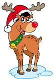 Ren im Weihnachtshut Stockfotos