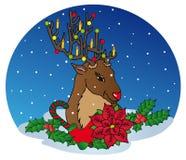 Ren mit Weihnachtsdekoration Lizenzfreies Stockbild