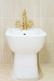 Ren och vit bidé med den guldpläterade vattenkranen Royaltyfri Foto