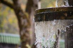 Ren sötvattenvattenfall i skog i bergen Gammal fontain stänger sig upp royaltyfria bilder