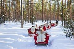Ren Safari Sled im Winter Forest Rovaniemi Finland Lapland lizenzfreies stockfoto
