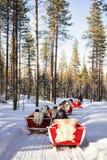 Ren Safari Sleigh im Winter Forest Rovaniemi Finland Lapland lizenzfreie stockbilder