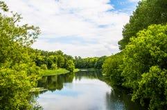 Ren sjö i gröna vårsommarträd Arkivfoto