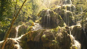 Ren vattenkälla av bergskogen 4K - 9 stock video