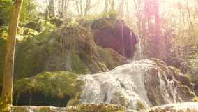 Ren vattenkälla av bergskogen 4K - 14 stock video
