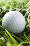 Ren vit Golfball på grönt gräs Royaltyfri Fotografi