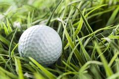 Ren vit Golfball på grönt gräs Royaltyfri Bild