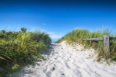 Ren vit sand som leder till en Nordsjönstrand Arkivbild