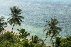 Ren vit sandstrand med palmträd i Thailand, Koh Phangan arkivfoto