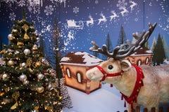 Ren von Santa Claus Lizenzfreie Stockfotografie