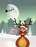 Ren am Weihnachten Lizenzfreie Stockfotos