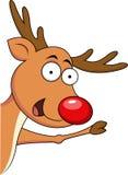 Rena bonito do Natal Fotografia de Stock