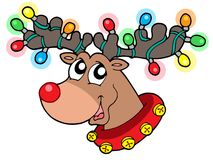 Rena bonito em luzes de Natal Imagem de Stock Royalty Free