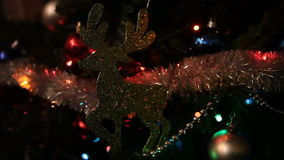 Rena com luzes de Natal filme