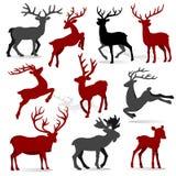 Rena da coleção do Natal ilustração stock