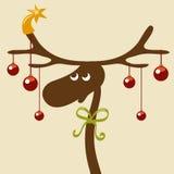 Rena do Natal Imagem de Stock