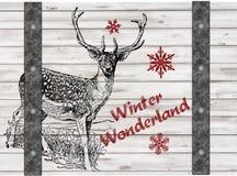 Rena do Natal do país das maravilhas do inverno de Handdrawing Fotografia de Stock