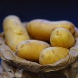 Rena nya potatisar i bryner pappers- hänger lös Fotografering för Bildbyråer