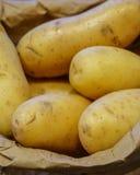Rena nya potatisar i bryner pappers- hänger lös Arkivbilder