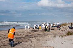 Rena oil spill clean up workers Stock Photography