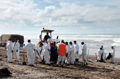 Rena oil spill clean up workers Stock Photos