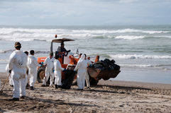 Rena oil spill clean up workers Royalty Free Stock Image
