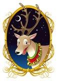 Rena para o Natal Fotografia de Stock Royalty Free