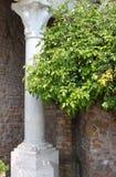 Renaissance corner Stock Images