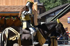 The 2016 Renaissance Faire in New York State Stock Images