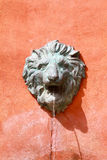 Renaissance lion head fountain Stock Photography