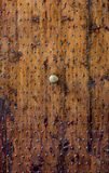 Renaissance Walnut Door, Bologna, Italy. Weathered old Walnut door with its original iron studs in Bologna Centro Royalty Free Stock Photography