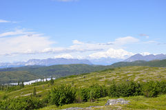 Renamed Denali, the mountain formerly known as Mt. McKinley rises in the distance Royalty Free Stock Photos