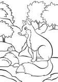 Renard adroit mignon se reposant dans la forêt et regardant l'oiseau de chant Image stock