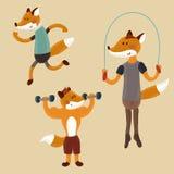 Renards sportifs illustration stock