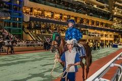 Renbaan Hong Kong van de paardenkoers de Gelukkige Vallei Royalty-vrije Stock Afbeeldingen