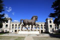 renbaan van Milaan met het het paardstandbeeld van Leonardo royalty-vrije stock foto's