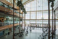 Rencen winter garden Royalty Free Stock Image