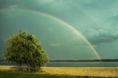 Rencontrer l'arc-en-ciel Photos libres de droits