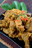 Rendang Daging Royalty Free Stock Photography