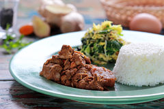 Rendang de la carne de vaca servido con el urap y el arroz Foto de archivo