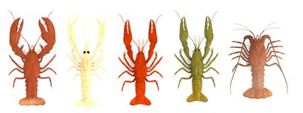 Render of crustacean set Stock Photos